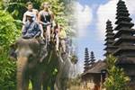 Bali Best Tour Activities