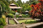 Bali Half Day Tours | Visit Tanah Lot Temple with Sunset | Star Bali Tour