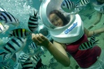 Bali Sea Walker Tour Activities